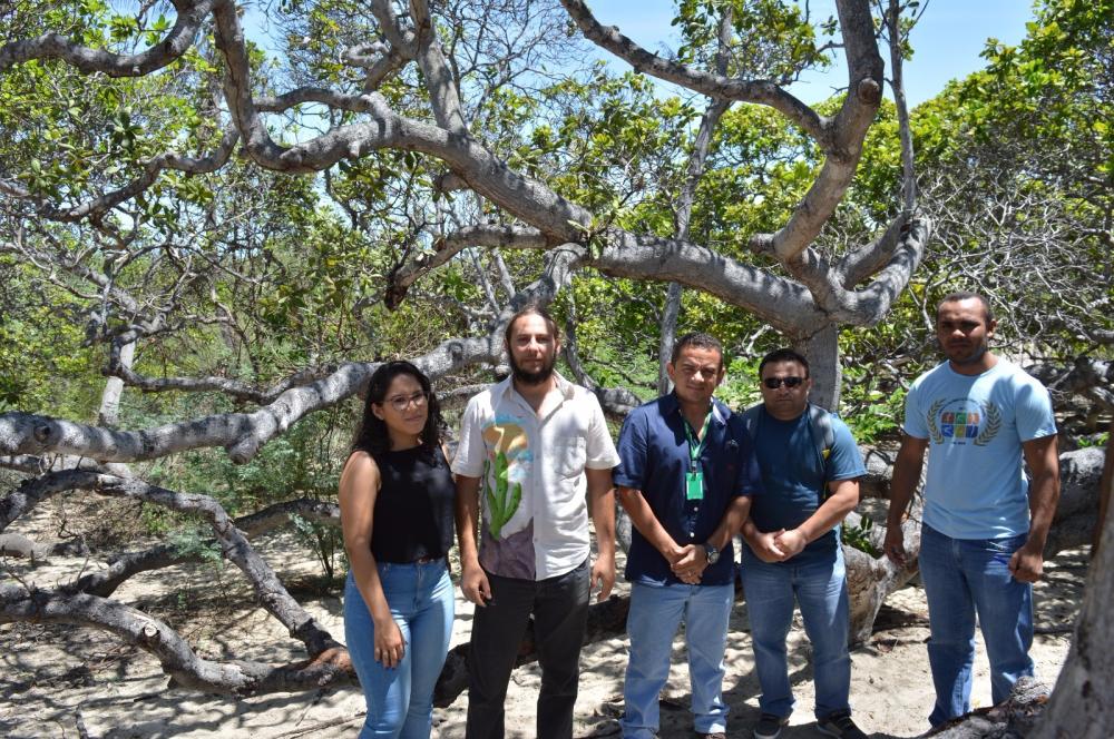 Membros da parceria de educação ambiental visitam cajueiro, que receberá ações.